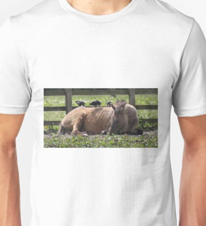 Crows pruning horse Unisex T-Shirt