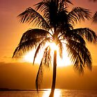 Sunset in Paradise by craigNdi