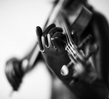 Project L: The violinist by photour