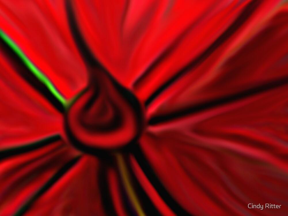 Poppy by Cindy Ritter