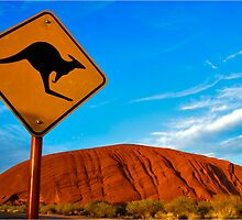 Uluru and a Kangaroo by ozczecho