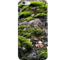 Mosses Killarney National Park Qld Australia iPhone Case/Skin