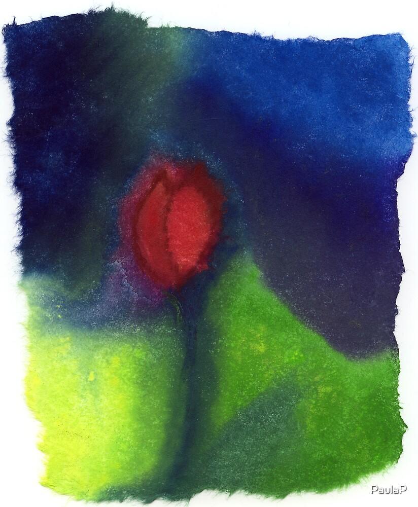Tulip by PaulaP