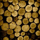 Logs by Ed Stone
