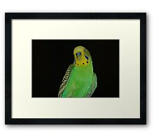 Yes...I Know I Am Beautiful Framed Print