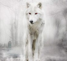 Wolf Artwork - GHOST by Liancary