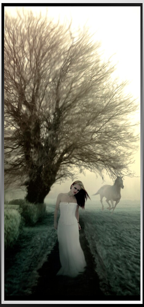Out of Fog by Cliff Vestergaard