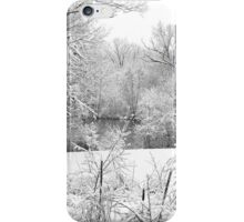 Winter Snow At Huron River iPhone Case/Skin