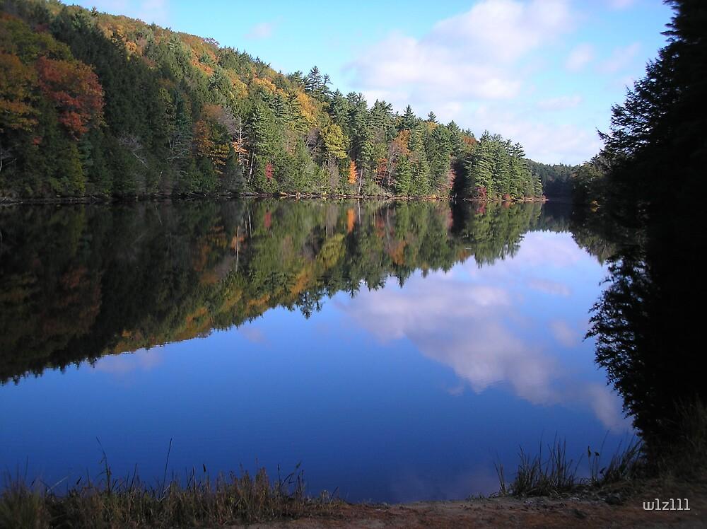 Autumn in New England by w1z111