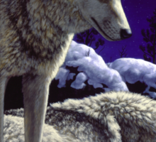 Night Watch - Wolves Oil Painting Sticker