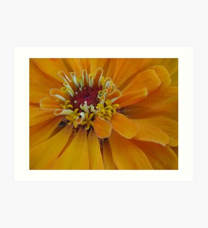Miksang Flower 1 Art Print