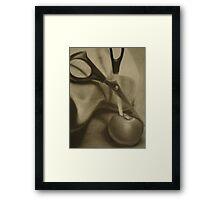 Apple Slice Framed Print