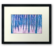 Frozen Birch Forest Framed Print
