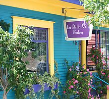 La Bella Vila Salon Little Italy by Elizabeth Heath