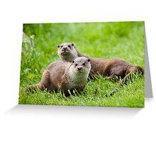European otters Greeting Card