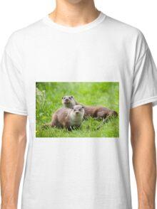 European otters Classic T-Shirt