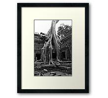 Ta Prohm  Framed Print
