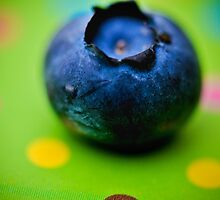 The First Blueberry by Nadia Uddin