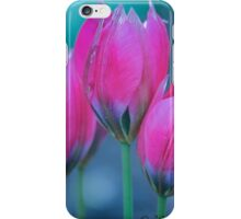 Spring In Three  iPhone Case/Skin