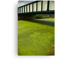 2012 London Olympic Pre-Demolition Green 3 Canvas Print