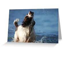 Cool off Greeting Card