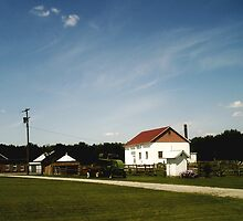 heritage farm, frankenmuth, michigan. by Sarah Reed