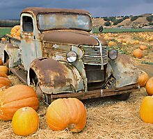 Chevy truck pumpkin patch by Elizabeth Heath