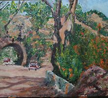 Wombeyan Caves Road by Ozcloggie