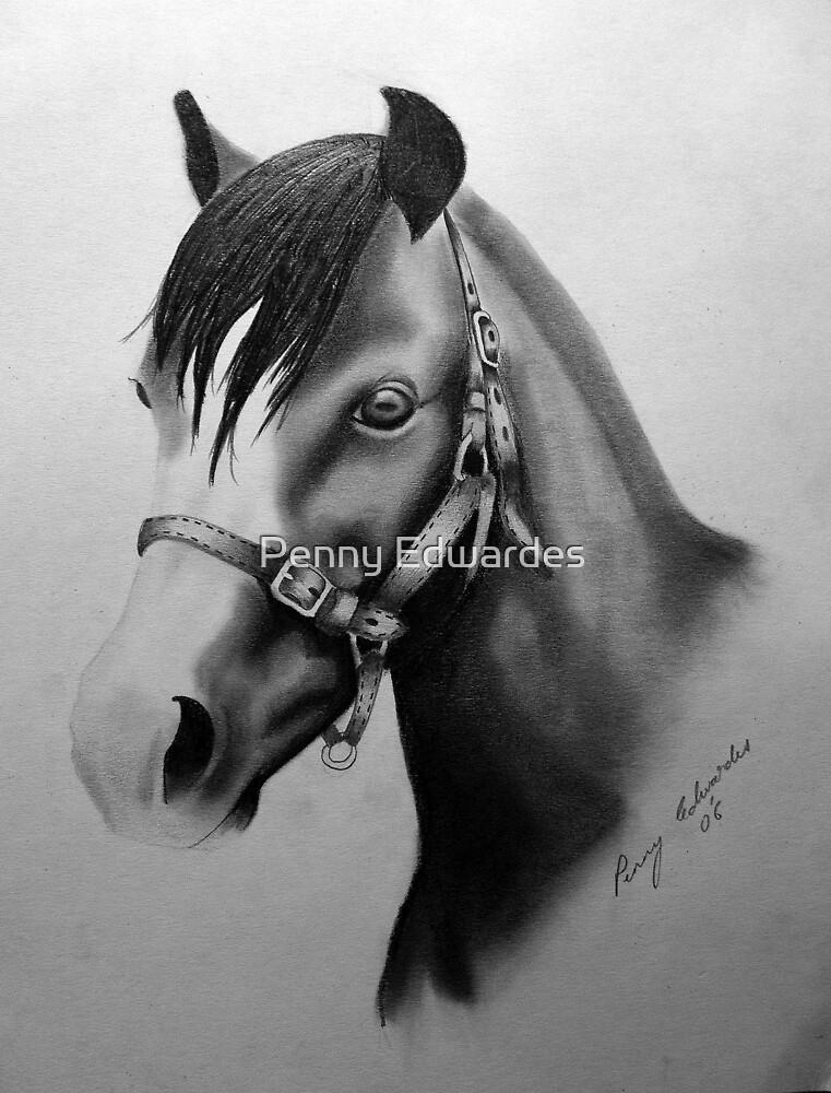 Pony by Penny Edwardes
