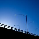 Blue Poles by Andrew  Maccoll