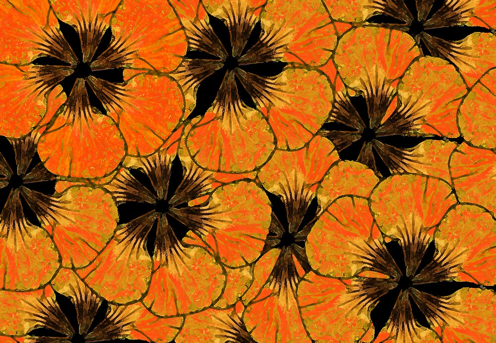orange flowers by Carolyn