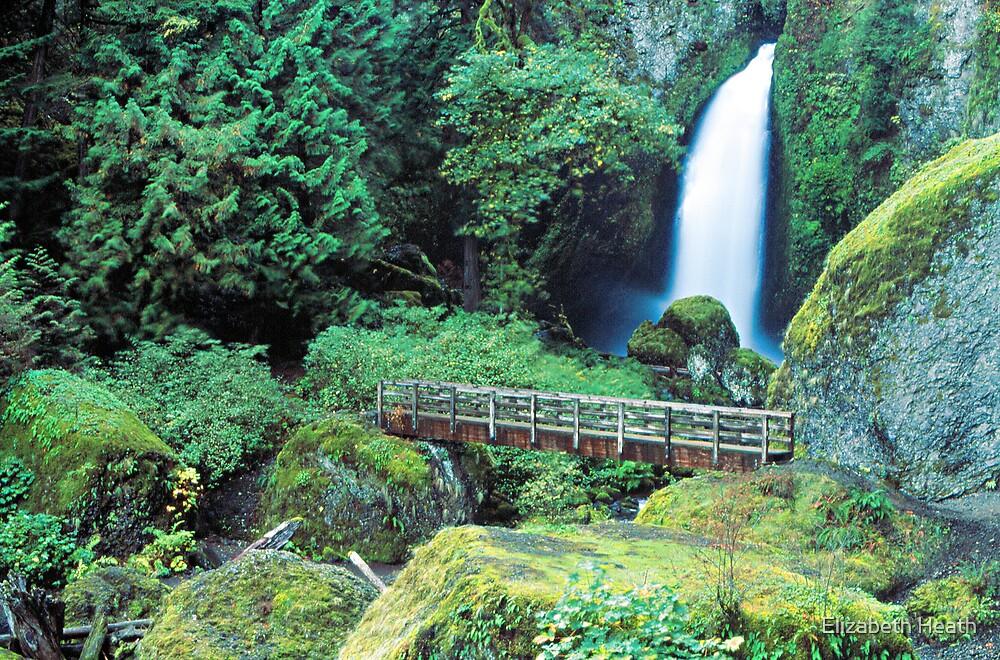 Waterfall and bridge by Elizabeth Heath