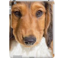 Perfect puppy iPad Case/Skin