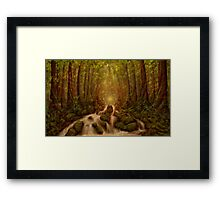 Divine Encounter Framed Print