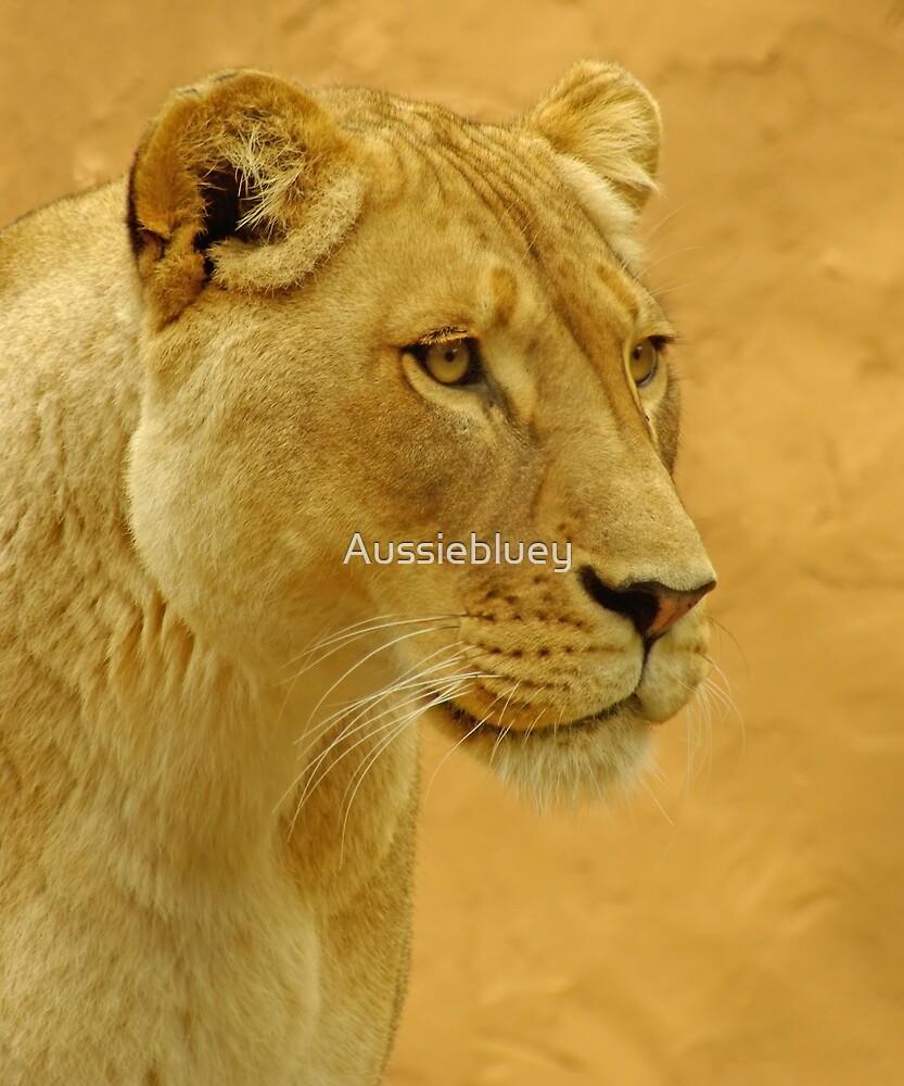 Lioness headshot. by Aussiebluey
