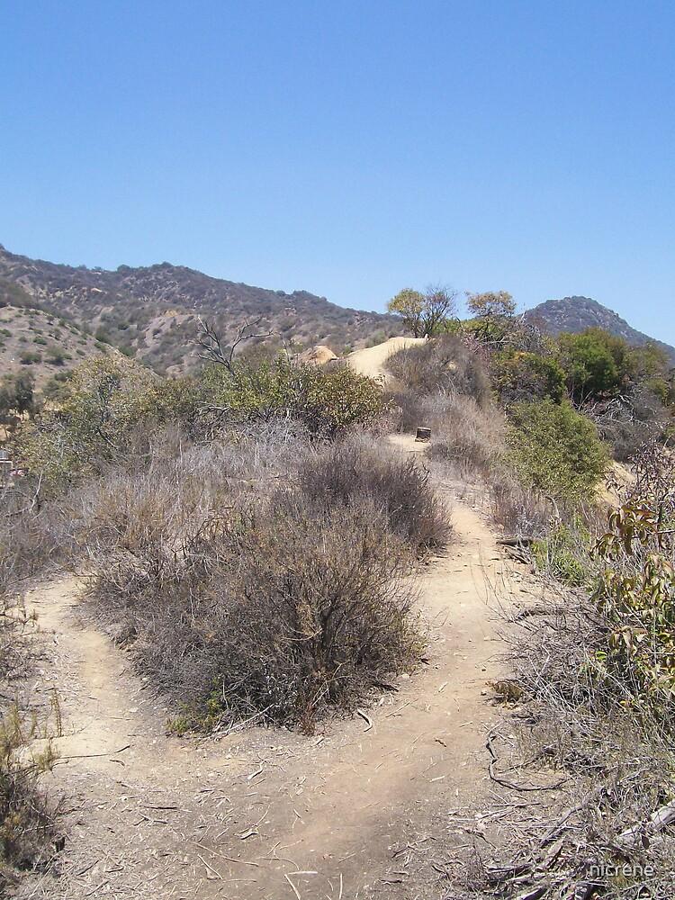 Path by nicrene
