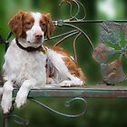Take A Seat by Helen Green