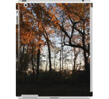 Leafs at Sunset iPad Case/Skin