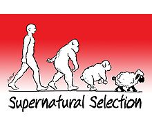 Supernatural Selection (on Light colors) Photographic Print