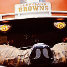 Go Cleveland Browns by Rachel Counts