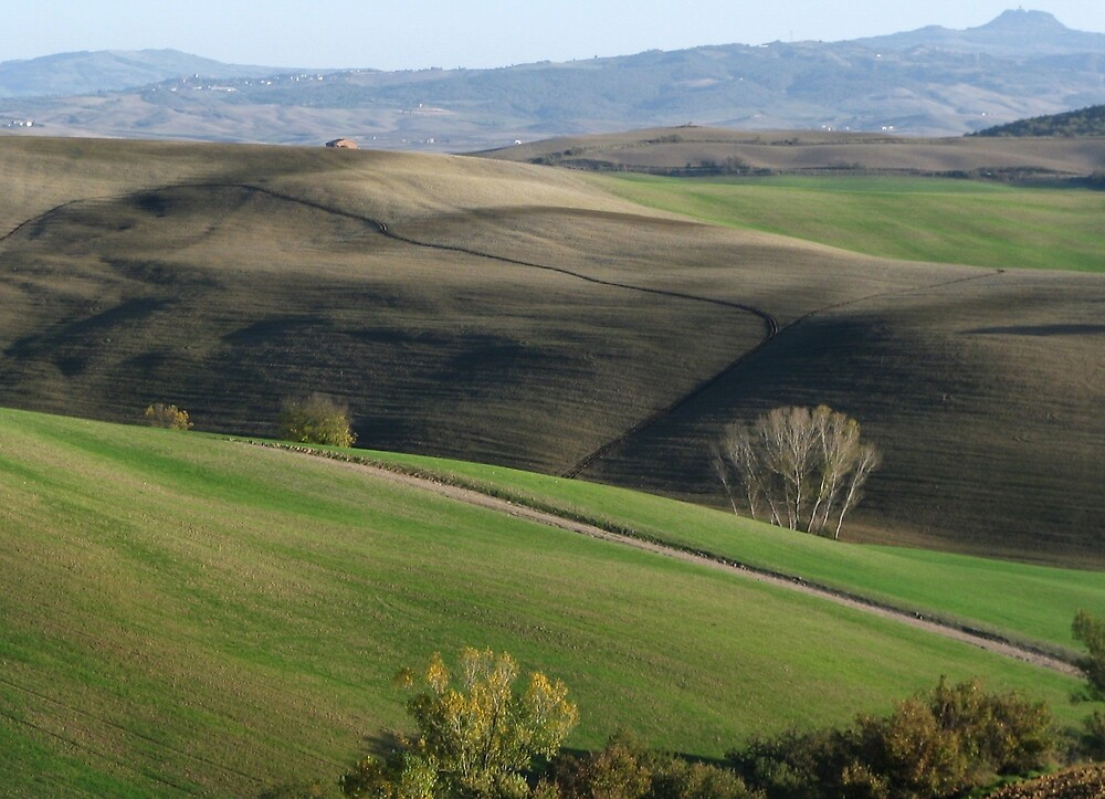 Orcia Valley by mirkosan