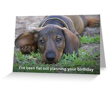 Flat out Greeting Card