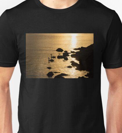 The Gliding Couple -  Unisex T-Shirt