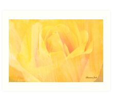 Petals ~ Painted with a Broad Brush Art Print