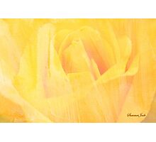 Petals ~ Painted with a Broad Brush Photographic Print