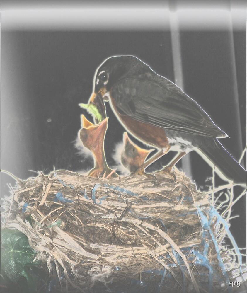 The Feeding by spig