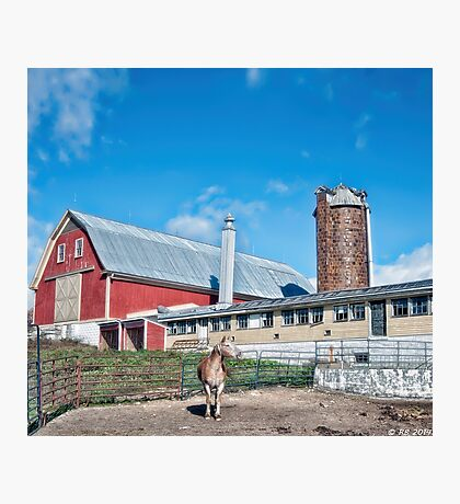 Harvest Hill Farms Photographic Print