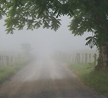 foggy lane by Christopher  Ewing
