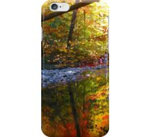 In surround colour iPhone Case/Skin