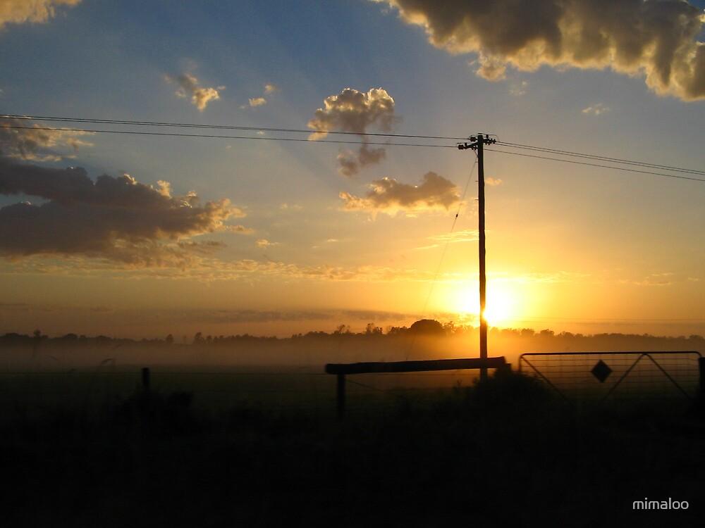 sunrise in ballina by mimaloo